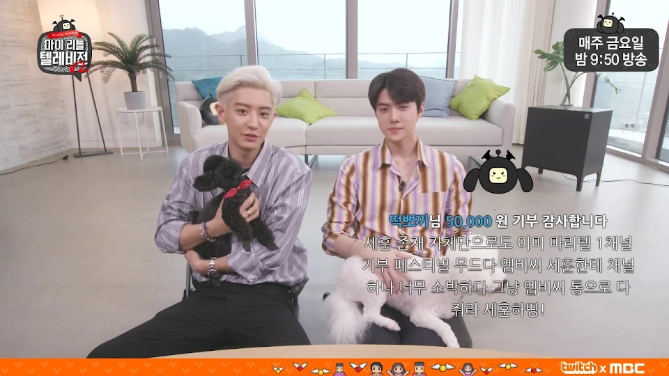 sehun chanyeol my little television