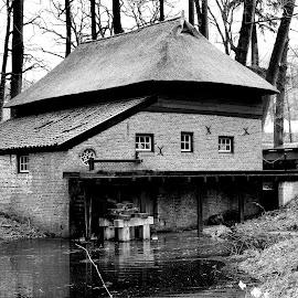 Old watermill in Holland by Bob Has - Black & White Buildings & Architecture ( water, mill, old, dutch, arnhem )