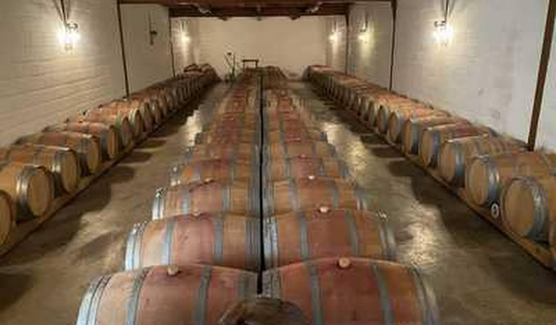 Vignoble avec dépendances Bordeaux