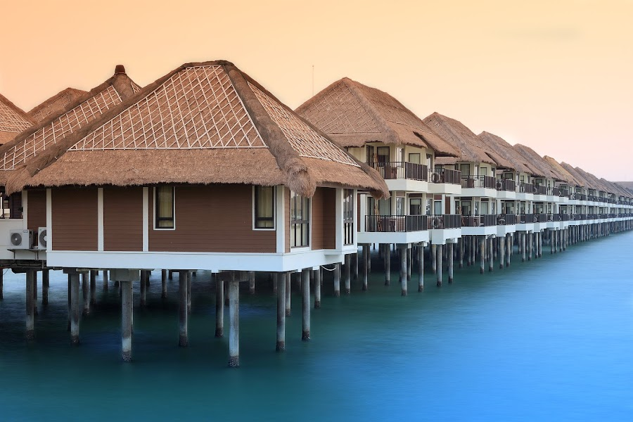 Golden Palm Tree Resort by Sunny Wong - Landscapes Travel (  )
