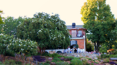 Photo: Ceremony in progress - Mary's at Falls Cottage - Greenville, SC - 9/10 - http://WeddingWoman.net