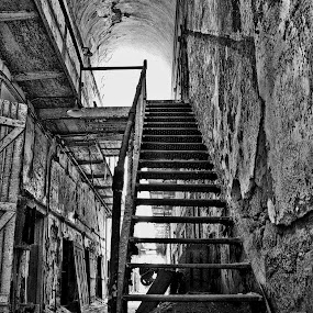 Climb to Solitude by Charles Anderson Jr - Buildings & Architecture Public & Historical
