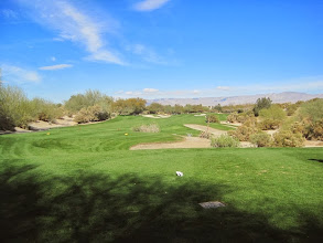 Photo: Desert Willow in Palm Desert