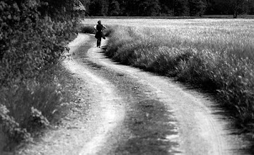 Photo: track