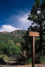 Photo: Trailhead, Pinaleno Mountains, Coronado National Forest, Arizona