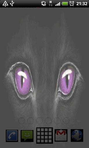Panther Eyes Live Wallpaper