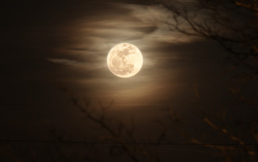Moon by Danica Barreau - Landscapes Starscapes ( moon )