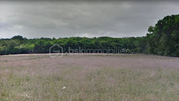 terrain à Pourrain (89)