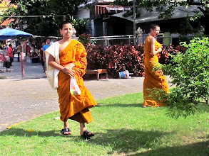Photo: young novice monks watch the procession