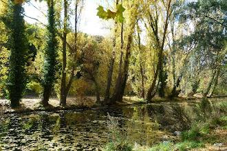 Photo: Alameda de Segovia río Eresma