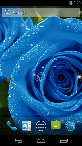 Blue Rose Live Wallpaper