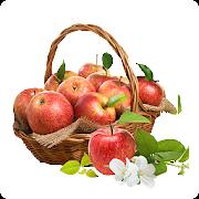 Free Fruits Vegetables APK for Windows 8
