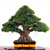 Beautiful Bonsai Design