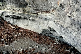 Photo: A Macska-lyuk csarnokának É-i része.