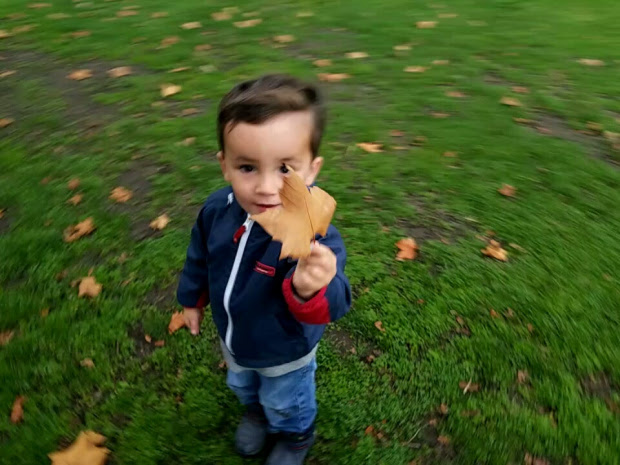 Young boy standing on grass holding a leaf