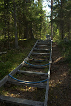 Photo: Trail for hauling canoes down to the river