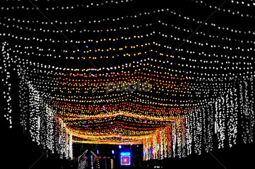 Light Decoration Things Digital Art Pixoto