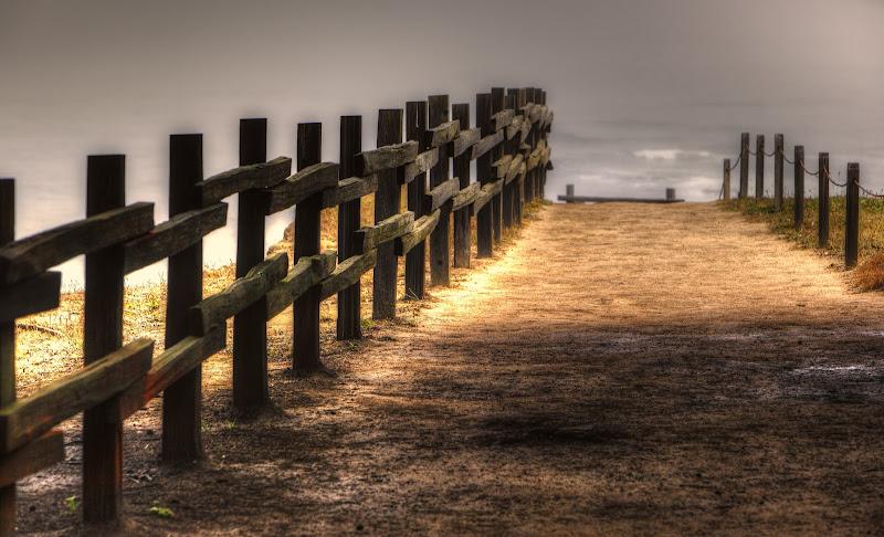 Photo: Walk My Way - Fitzgerald Marine Reserve - 2012