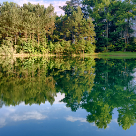 Reflections  by Ryan Roettges - Instagram & Mobile iPhone ( water, nature, creek, trees, lake, pond,  )