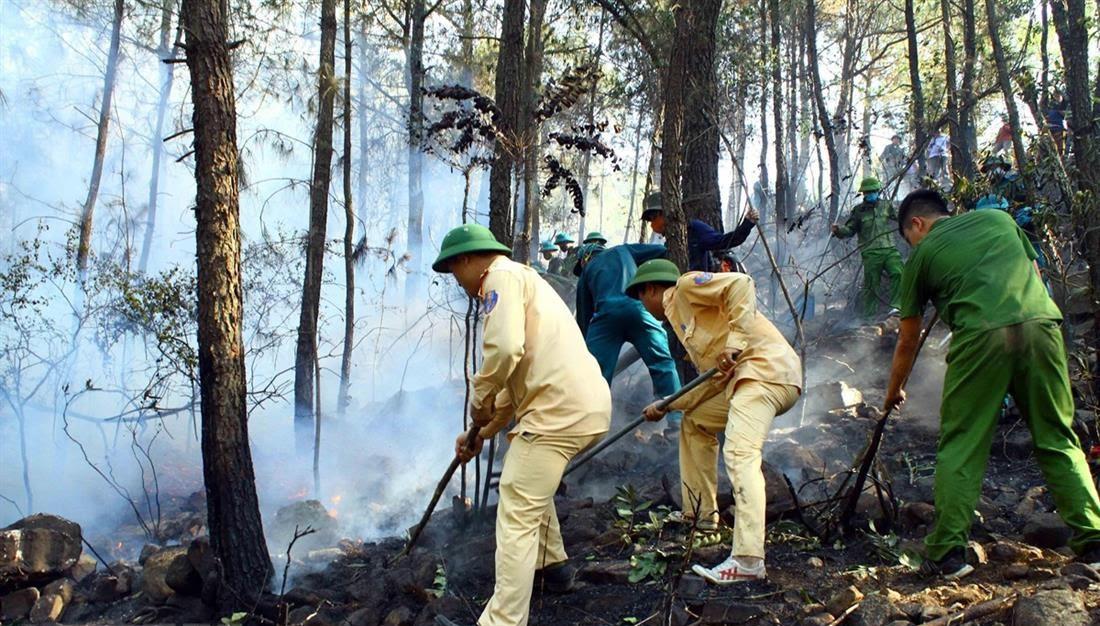 Lực lượng Công an cùng các lực lượng khác tham gia chữa cháy rừng tại Diễn Châu.