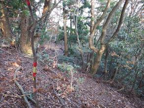 コース分岐(左が本来の道)