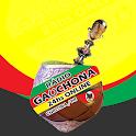 Radio Gauchona icon