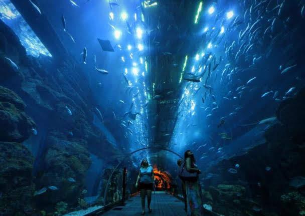 Aquário e Zoológico Subaquático de Dubai