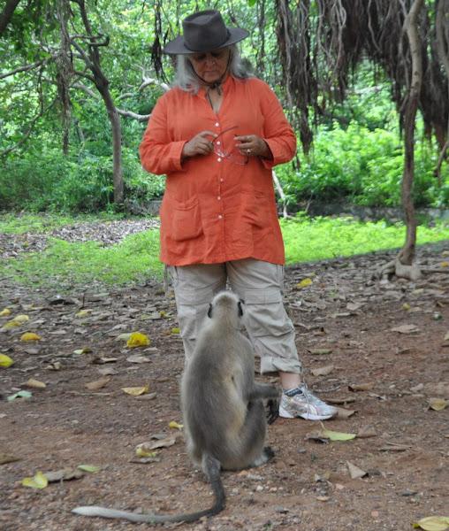 Photo: Forest and Environment Minister Hon'ble Bina Kak