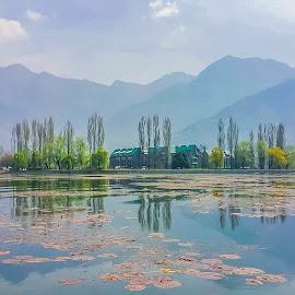 Dal lake ,Srinagar,Kashmir  by Amrita Bhattacharyya - Instagram & Mobile iPhone (  )