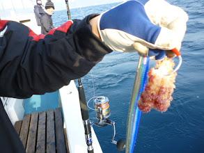Photo: ・・・だーれ? 魚を釣ろうー!