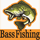 Bass Fishing Techniques & Tips & bass fishing lure