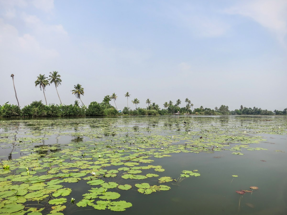 India. Kerala Motorbike Road Trip. Kumarakom Backwaters