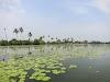 India. Kerala Motorbike Road Trip. Kumarakom Backwaters