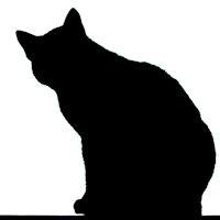 Chat Noir di Luigi Segatori