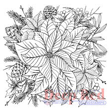 Deep Red Cling Stamp 3X3 - Color Me Poinsettia UTGÅENDE