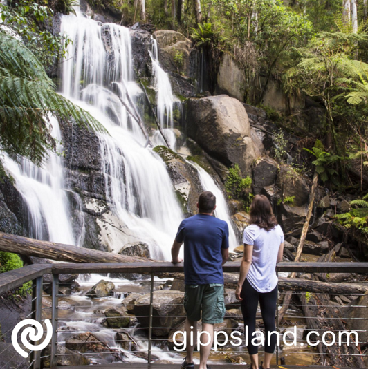 Make plans to get into nature on your next exciting road trip to Gippsland and come see the majestic waterfalls in the region
