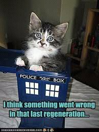 Photo: Kitty in Tardis #Caturday   Y #twt