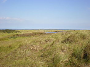 Photo: Norfolk Coast Path - From Holme to Brancaster - Holme Dunes and Marsh