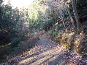 作業道(林道)は左奥へ