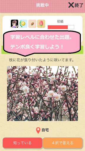 玩教育App|花の名前ダウト ~ゲーム感覚でお花が勉強できる~免費|APP試玩