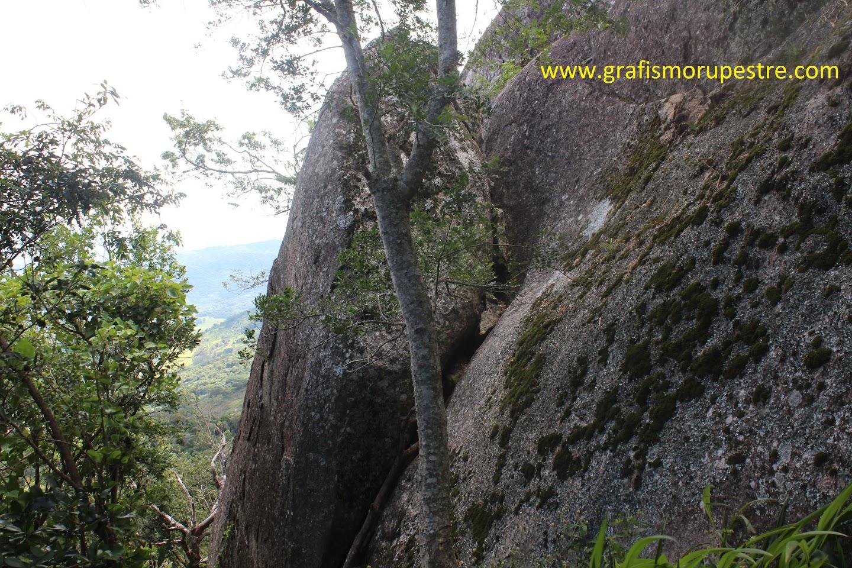 A Pedra do Sapo tem esse nome devido a sua aparência quando vista de longe. Pode-se escalar seus aproximados 6m de altura através de uma fenda.