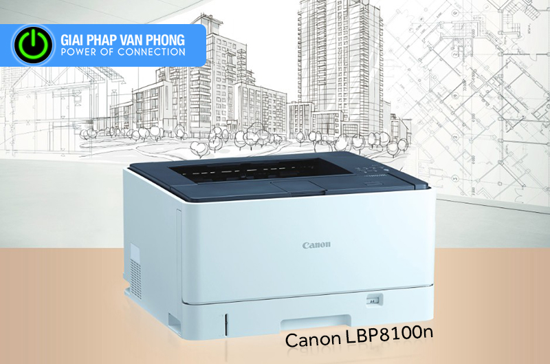 Canon LBP8100n Initializing System Management Settings by Using the