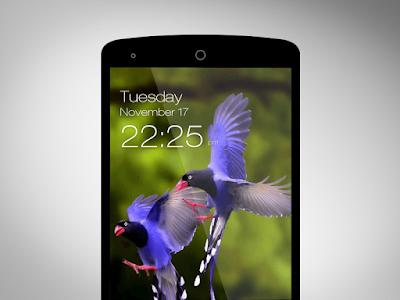 Birds Wallpaper HD Lockscreen screenshot 2