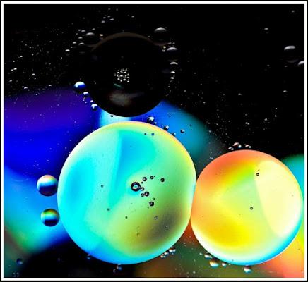 Una questione di cellule... di Tiziana Detoni