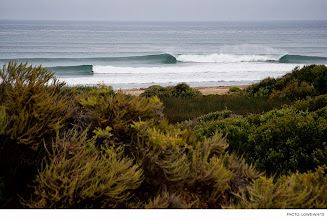 Photo: Photo of the Day: Lower Trestles, California. Photo: Lowe-White #Surfer #SurferPhotos