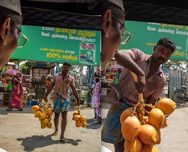 Photo: King Coconut Hospital Road Jaffna Sri Lanka