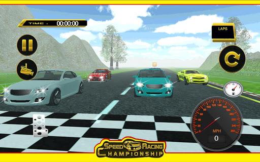 スピードレース選手権