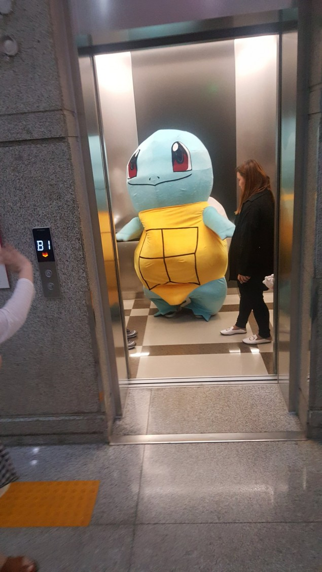 JR squirtle