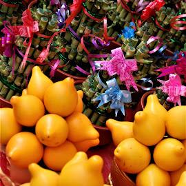 New Year;s Lemons by Donna Van Horn - Food & Drink Fruits & Vegetables (  )