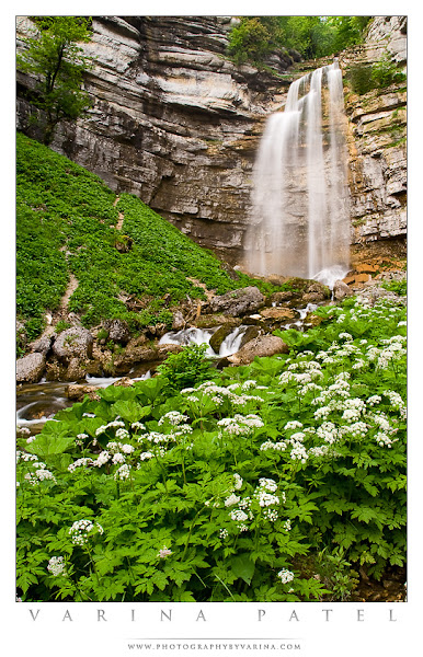 Photo: Photographing France  Check out our FREE eBook here: http://www.photographybyvarina.com/photography/ebooks/ebook-photographing-france  Thanks so much for your comments and shares!  So, here's a shot I took in Jura, France in 2006. This is Grand Saut Falls. The region is incredibly beautiful - and I was lucky enough to be able to spend nearly three months wandering the countryside with my children. We hiked as many trails as we could find... visited castles... played in caves and rivers and lakes and waterfalls... picked dandelions... talked to wild swans...  I hiked this particular trail several times during our visit, since the area is packed with spectacular waterfalls. I wanted to shoot the falls with a layer of clouds in the sky to filter the light and avoid blown highlights in the water. (This image isn't about spectacular light or brilliant skies - but the light was carefully considered just the same.) So, we picked a slightly overcast day at the beginning of June - while the flowers were still in bloom, and before the summer crowds trampled the undergrowth.  I wanted to smooth the flowing surface of the water for a silky effect, so I chose a shutter speed of 0.4 seconds. Since the flow was pretty heavy, that would be enough to produce the effect I wanted. An aperture of f/11 was sufficient to capture the entire scene in sharp focus - provided that I chose the right point of focus.  I set up my tripod at the edge of the trail, and settled in to wait. Because of that long shutter speed, I'd have to get the shot at a moment when the breeze settled down. After a short wait, I got the lull I was hoping for. I fired off a few shots - checked each for good focus, and deleted those with any motion blur in the leaves.  It's a simple image - meant to convey the fresh beauty of the location with a simple color palette and a clean composition. I used the flowers in the foreground to provide a sense of the place. If I print this at large size, I want you to feel as